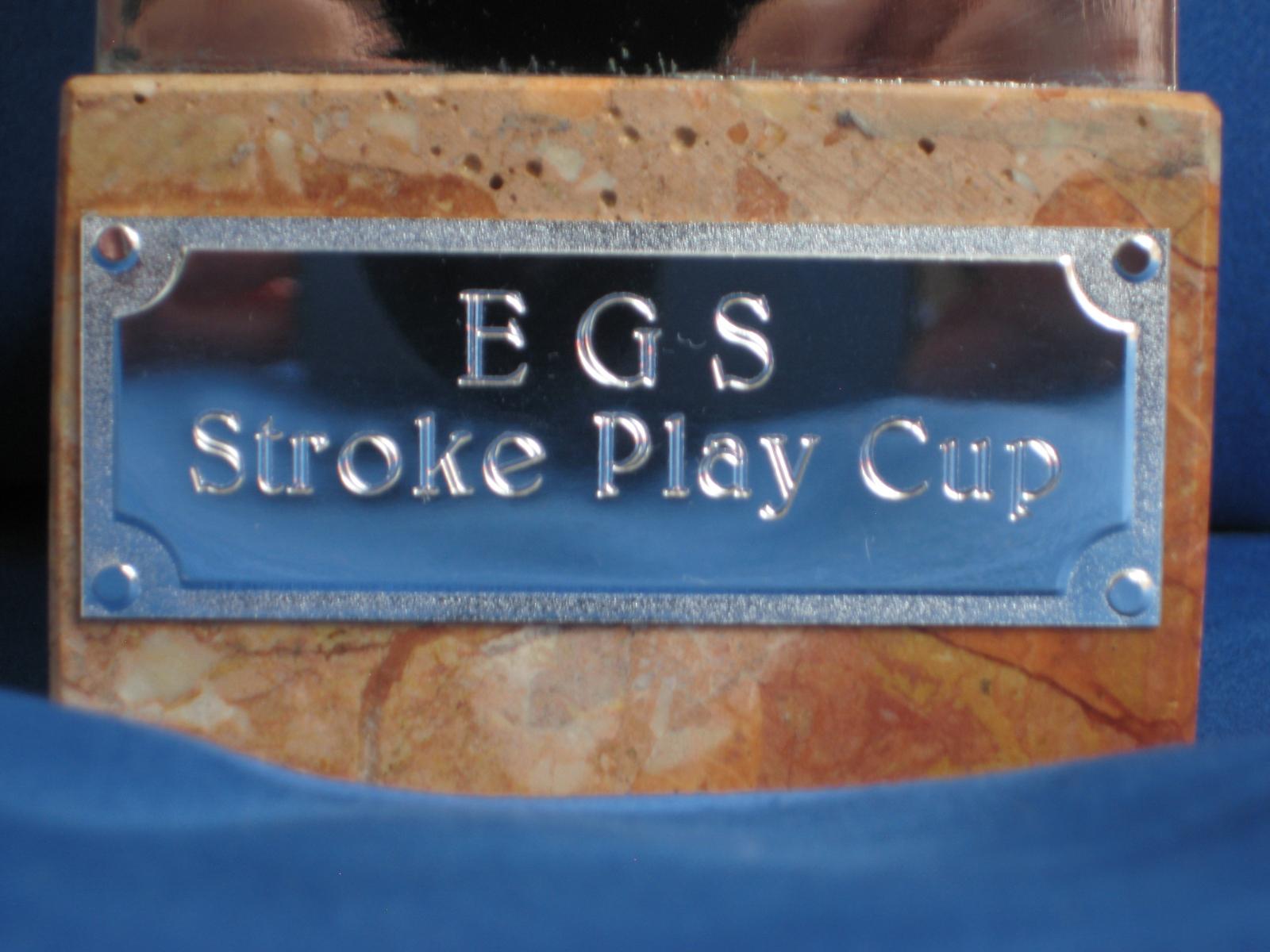 stroke-new-plate
